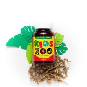 Kids Zoo multivitaminer og mineraler